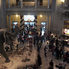 National Museum of Natural History, Smithsonian Institution, Washington, DC