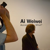 Smithsonian Institution Hirshhorn Museum and Sculpture Garden , Ai WeiWei, According to What?