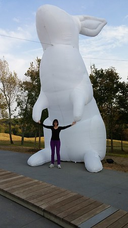 Giant Bunnies at NC Museum of Art - Nov 2016