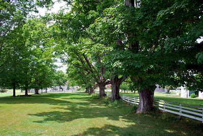 View in front of the Meetinghouse