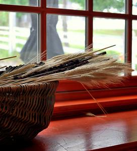 Basket of Wheat