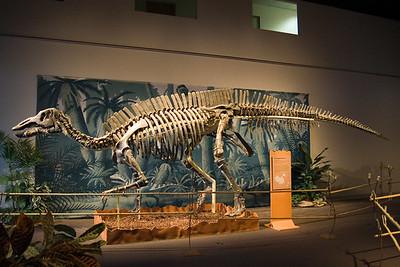 Shuangmiaosaurus (96996769)
