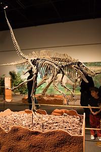 Velociraptor (96999803)