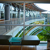 """GREEN BUILDING<br /> <br /> """"One of the greenest buildings in the nation is located in Little Rock. Heifer International Headquarters was specifically designed to be """"green."""" From the land to the building materials, everything was designed with environmentally responsible methods and materials in mind.""""<br /> <br /> """"The site chosen for the building was an abandoned railroad yard in a warehouse district. It needed cleaning up. So, Heifer took the challenge and removed 75,000 tons of """"dirty"""" earth, lots of scrap and some dilapidated buildings. They used the masonry from some of the buildings for the new construction.""""<br /> <br /> WHAT MAKES IT GREEN?<br /> <br /> """"The building uses less than half the energy of a typical office. How do they do it? The environment was considered in every step in building planning.""""<br /> <br /> """"Irrigation water is collected from a restored wetland around three sides of the building. To cool the building, rainwater is collected from the roof and graywater from sinks and fountains. This water is also used in toilets . . . if they're not waterless. Many of the urinals are.""""<br /> <br /> """"The layout of the building allows natural light in, allowing employees and visitors to use natural light. The building has light sensors which adjust for overcast days and night.""""<br /> <br /> ~ Reprinted texts from here: <a href=""""http://littlerock.about.com/od/museumsandculture/p/heifer.htm"""">http://littlerock.about.com/od/museumsandculture/p/heifer.htm</a><br /> <br /> Heifer International Headquarters<br />  1 World Ave.<br />  Little Rock, AR 72202"""