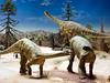 Plateosaurus display panorama, Triassic