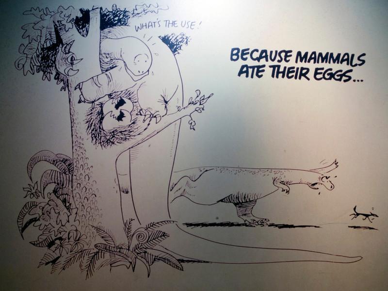 Why dinosaurs went extinct