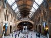 Natural History Museum, London, UK<br /> <br /> Olympus E-420 & Zuiko 12-60/2.8-4.0