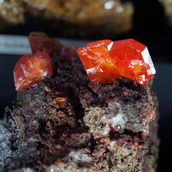 Wulfenite, Red Cloud Mine, Arizona, USA