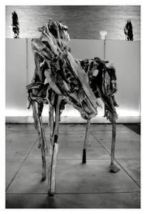 Horse (74112901)