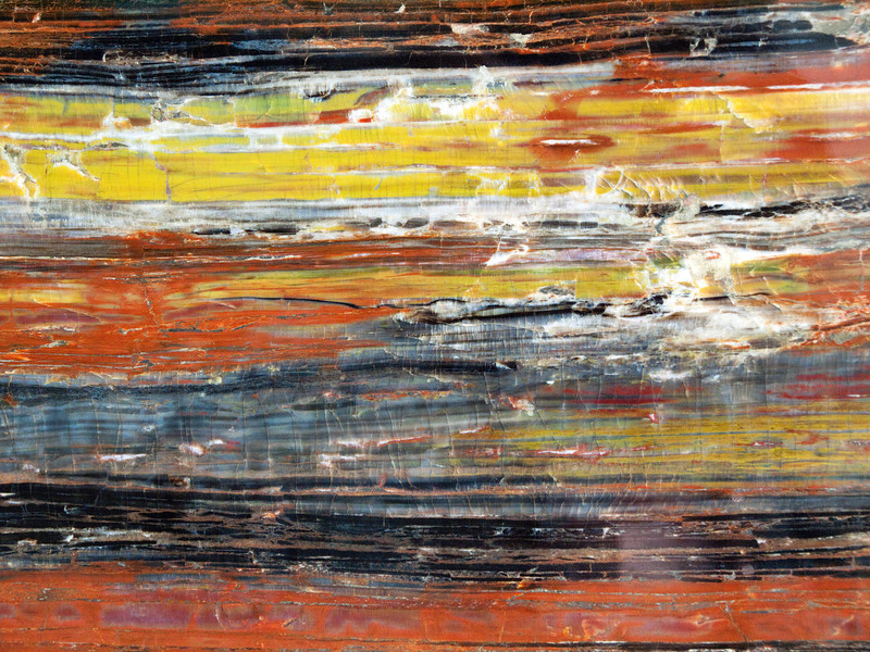 Petrified wood, Arizona, Triassic<br /> <br /> Olympus E-600 & Zuiko 12-60mm/2.8-4.0
