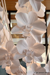 Paper orchids at Huntington Gardens gift shop