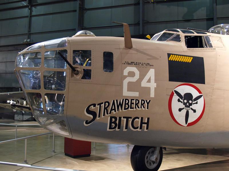 B-24 nose art