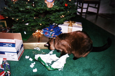 I'll help mommy open this one!