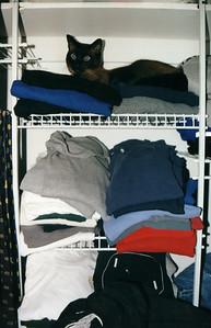 finds Mushu in the closet.