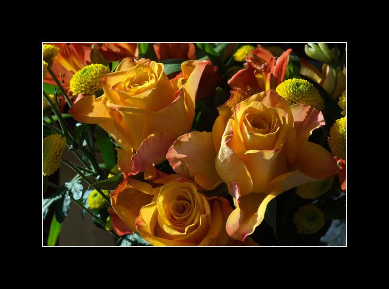 Blumen von Frau Kraft  16. November 2011