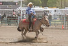 Mule Competition during the Bishop Mule Days - California