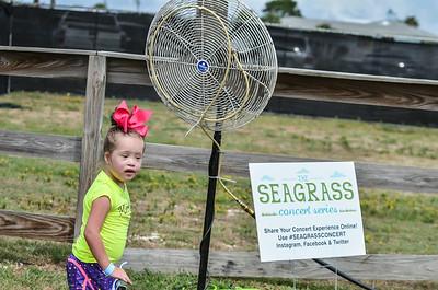 Seagrass Photos - Stancil-0829