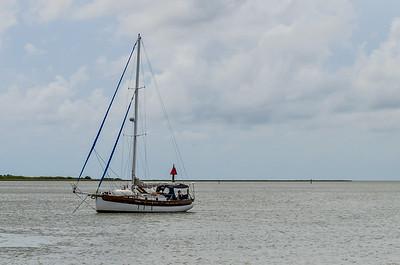 Seagrass Photos - Stancil-0835
