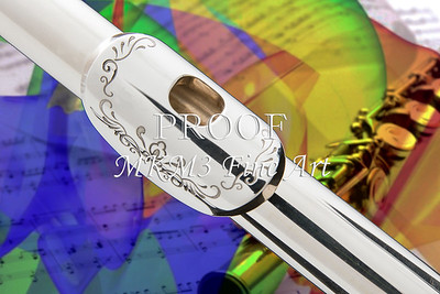 Canvas Art Flute Lip Plate Painting  3442.02