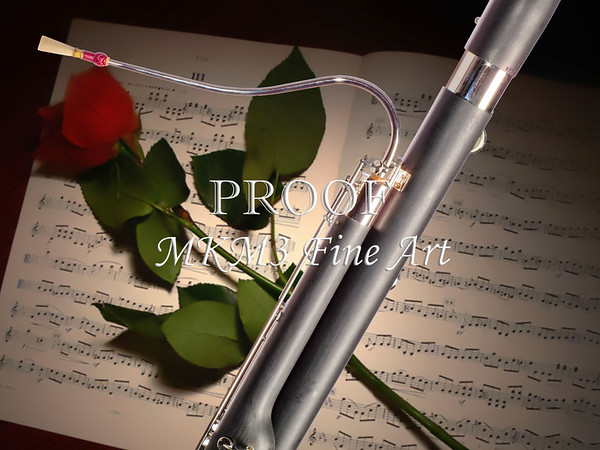 Bassoon Music Instrument Photograph in Color 3406.02