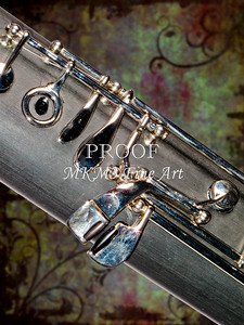 Bassoon Music Instrument Body Picture in Color 3420.02