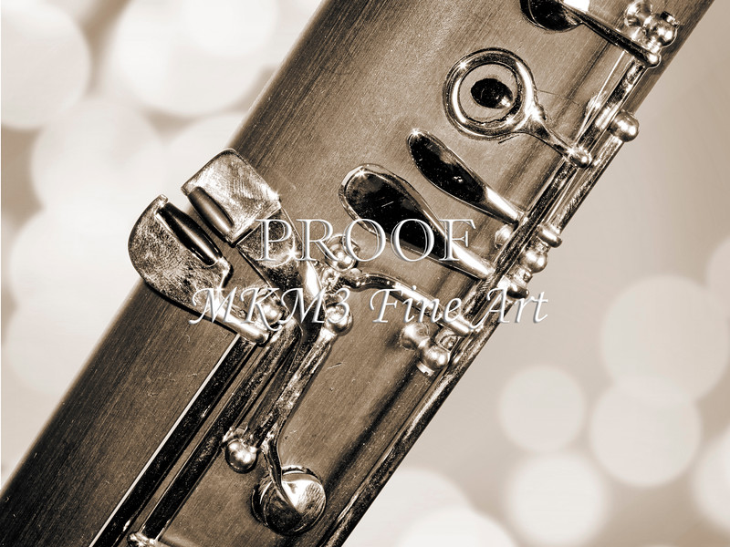 Body of Bassoon Music Instrument Picture in Sepia 3422.01