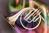 Painting of a French Horn Antique Classic in Color 3430.02