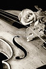 Violin and Rose