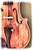 Violin Viola Body Painting in a Photograph 3266.02
