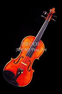 Photograph of a Complete Viola Violin in Color 3368.02