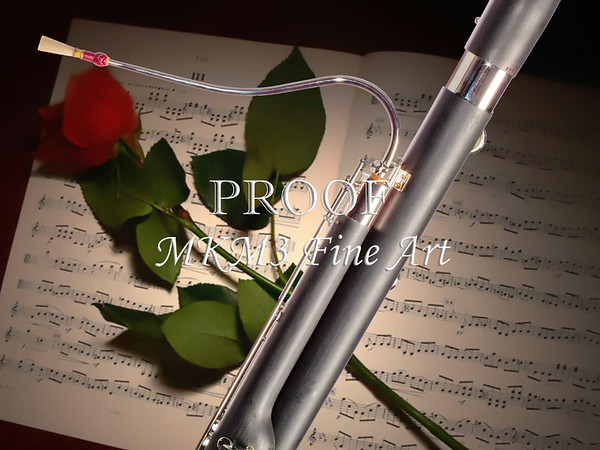 Bassoon Music Instrument Fine Arts Prints Photograph in Color 3406.02