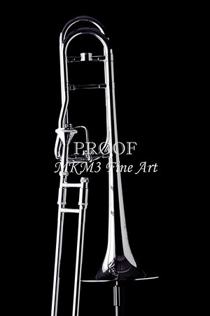 Rotor Trombone in Black and White 2602.14