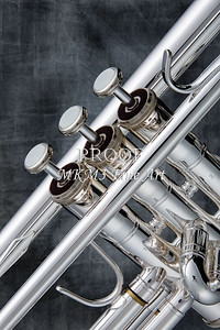 Low Key Silver Trumpet In Color 2501.19