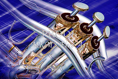 Excited Trumpet Valves In Color 2501.17