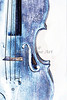 Violin Watercolor Art Prints 6030