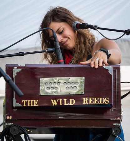 The Wild Reeds - Nelsonville Music Festival 2016