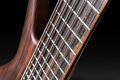 Al Johnson Bass-8
