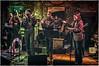 2014 Baby Blues Showcase