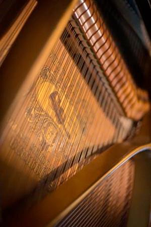 CRO-Music-612-T1x9eZ64