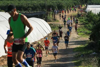 חצי מרתון השרון 2015 - על המסלול 1