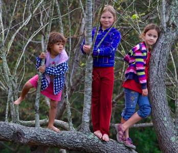 """Tree Sisters"""