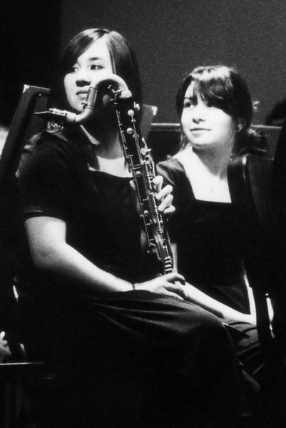 Two bass clarinetists