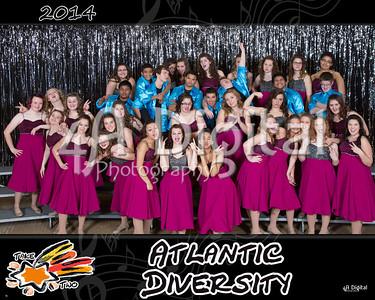 Diversity group 2