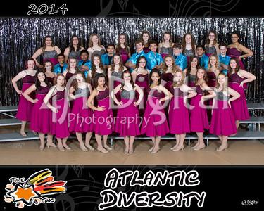 Diversity group 1