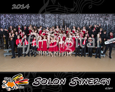 Synergy group 2