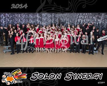 Synergy group 2