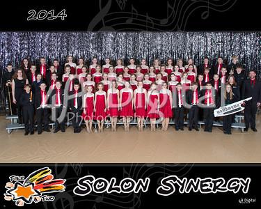 Synergy group 1