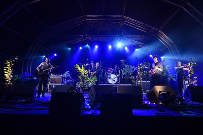 British Sea Power perform at End of the Road Festival 2014 - 29/08/2014