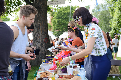 Field Day Festival 2014 - 07/06/2014