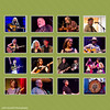 Arlo Guthrie David Hidalgo David Lindley  David Nelson Emmylou Harris and Rodney Crowell Iris Dement Jackie Green  Jake Shimabukuro Lisa Lobe  Los Cenzontles   Robin Ford  Los Lobos Preservation Jazz Band